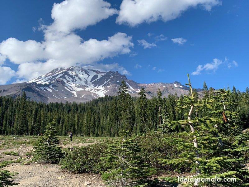 Mt. Shasta visto de Bunny Flat. daqui saem várias trilhas rumo a montanha