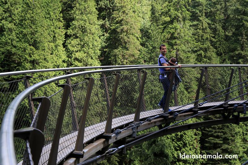 Capilano Park: uma forma espetacular de ver árvores do alto