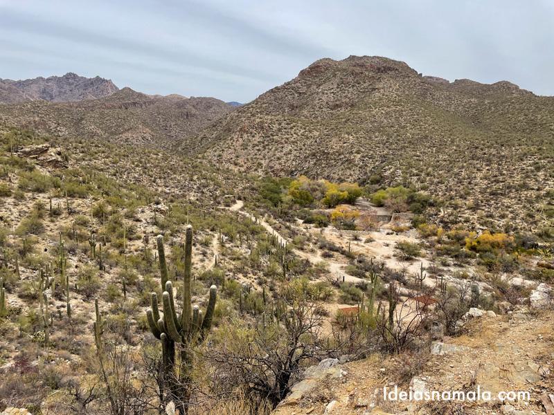Visual do Sabino Canyon em Tucson