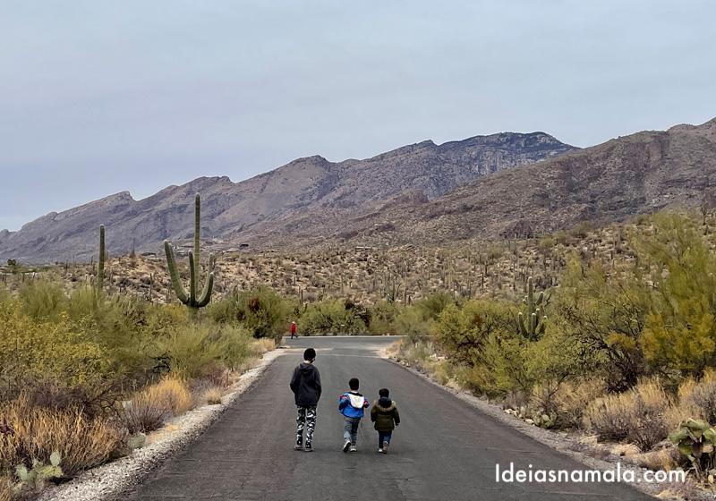 Montanhas de Tucson vistas do Sabino Canyon
