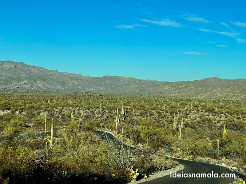 Saguaro East District em Tucson, uma pedida para o final de tarde